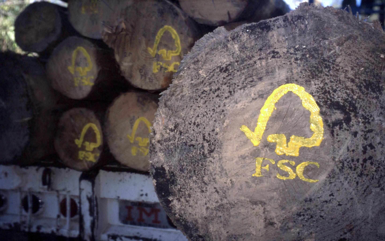 FSC-Logo auf Holzstämmen © N.C. Turner / WWF